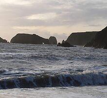 Waterford coast Nr Westown &Kilfarressy,Co Waterford. by Pat Duggan