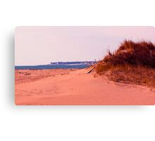 Along The Dunes Canvas Print