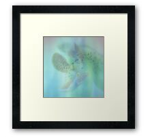 You are So Soft ©  Framed Print