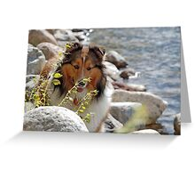 By the Waters Edge Greeting Card