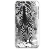 Zebra Munching iPhone Case/Skin