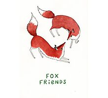 Fox Friends Photographic Print