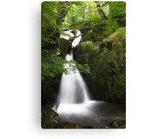 Stock Ghyll Force, Ambleside Canvas Print