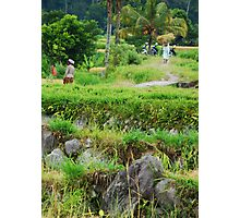 Balinese rural scene Photographic Print