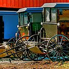 Amish Buggies  by Monte Morton