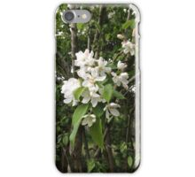 Crab Apple Blossom, Oxfordshire iPhone Case/Skin