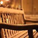 Bench left alone... by Yogesh  Mhatre