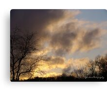 Evening Upon Us Canvas Print