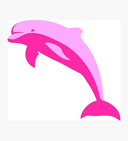 Pink Dolphin Photographic Print