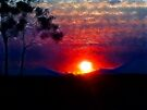 Bushland sunset by Jayson Gaskell