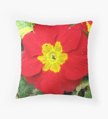 A Red Primrose Throw Pillow