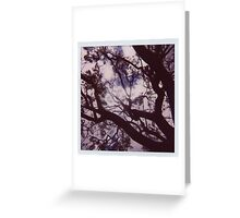 On a cloudy day Greeting Card