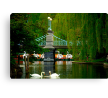 The Swans and Swan Boats Canvas Print