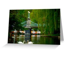 The Swans and Swan Boats Greeting Card