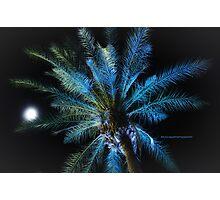 Scenes from Cali IX Photographic Print