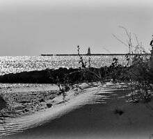 At Black Point by JoeGeraci
