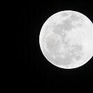 Wolf Moon in Full Glory by Blaze66