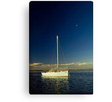 Wisper on the wind Canvas Print