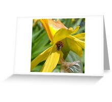 Little visitor Greeting Card