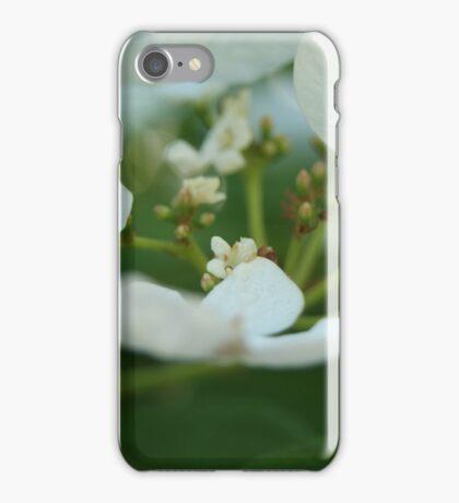 Flower Bowl iPhone Case/Skin