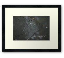 Floridian Snowflake Framed Print
