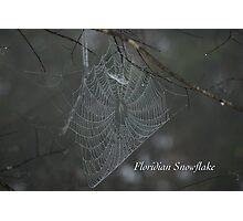 Floridian Snowflake Photographic Print