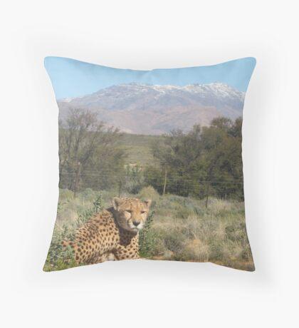 Inverdoorn- South Africa Throw Pillow
