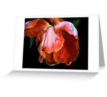Petal Play Greeting Card