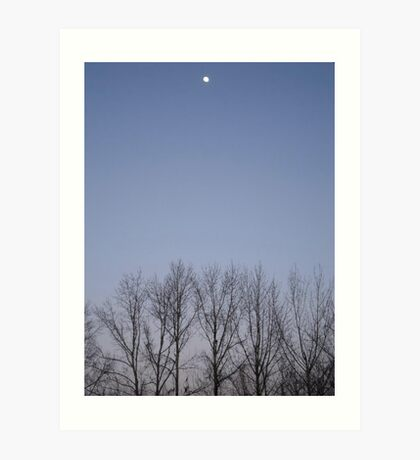Bare Trees and a Three-quarter Moon Art Print