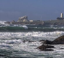 Point PIedras Blancas Lighthouse by Cathy L. Gregg