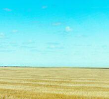 Expansive South Dakota Field  by kclcarlson