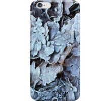 Winter leaves iPhone Case/Skin