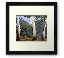 Mountain Look Out Framed Print