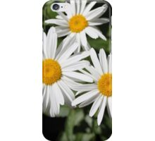 Pretty pure white daisy flowers. Floral nature photography.  iPhone Case/Skin