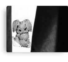 29.1.2010: Frozen rabbit Canvas Print
