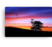 Color of Life Canvas Print