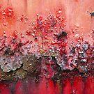 on fire by Lynne Prestebak