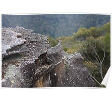 Sandstone Outcrop - Blue Mountains Poster
