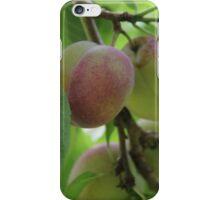 Plums iPhone Case/Skin