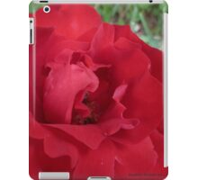 Red Roses in Mo's garden iPad Case/Skin