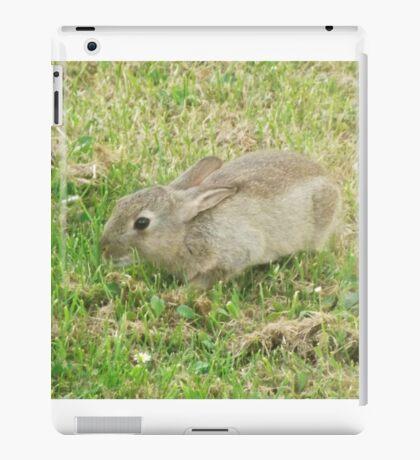 Local wildlife iPad Case/Skin