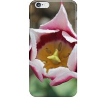 Tulip Top iPhone Case/Skin