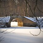 Bridge over frozen water by Heather Thorsen