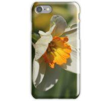 Poet's Daffodil iPhone Case/Skin