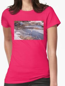 Last Days of Winter Womens Fitted T-Shirt