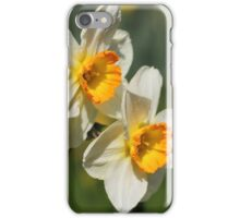 Poet's Daffodils iPhone Case/Skin