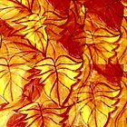 leaves tampered with! by linsads