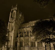 beverley minster at night by nickhedges