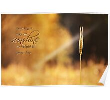 Ray of Sunshine: Greeting Card Poster