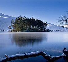 fro-Zen by Gordon Christie
